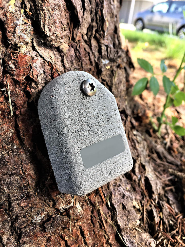 Picus Tms Tree Motion Sensor Products Tree